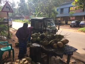 Tamil Nadu Coconutstand