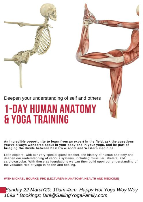 anatomy-poster-1